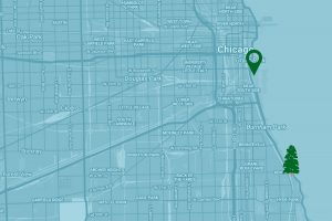Google Map to Soldier Field